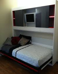 murphy bed in existing closet home design ideas