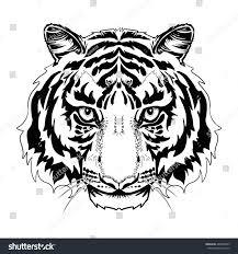 black white tiger head lineart tattoo stock vector 488489953