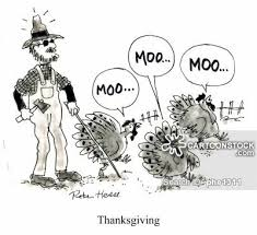 thanksgiving turkey and comics pictures from