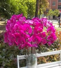 Artificial Flowers Wholesale The 25 Best Silk Flowers Wholesale Ideas On Pinterest Buy