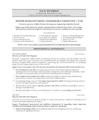 Free Resume Examples by Chief Technology Officer Resume Samples U0026 Examples
