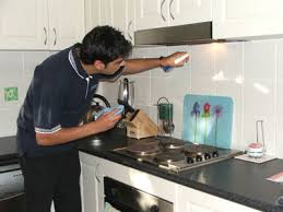 cleaning kitchen kitchen cleaning kalinga pest controls