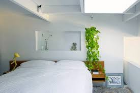 Hanging Plants For Patio Hanging Indoor Plants And Patio Plants U2013 Hanging Plants For The