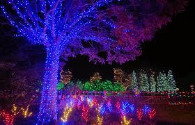 christmas lights in asheville nc winter lights dazzle the n c arboretum regarding christmas lights