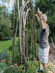 How To Build A Trellis by How To Build A Rustic Trellis Ellen Ecker Ogden
