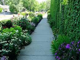 Sidewalk Garden Ideas Landscaping Ideas For Area Between Sidewalk And Front Yard