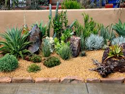extraordinary succulent garden design ideas with red designs 2017