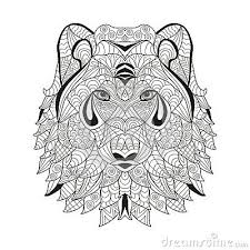wolf face coloring page 23 best wolf coloring pages images on pinterest drawings