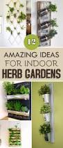 amazing ideas for indoor herb gardens