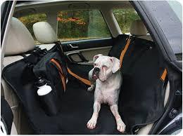 dog travel supplies