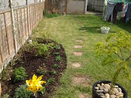 new border for boring garden gardening forum gardenersworld