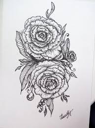 sketch of a rose u2014 steemit