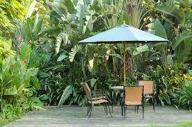 Tropical Plants For Garden - 29 serene garden patio ideas and designs picture gallery