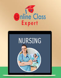 pay someone to do online class take my online nursing class for me online class expert
