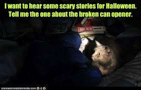 Scary Halloween Memes - i want to hear some scary stories for halloween lolcats lol