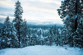 the coeur d alene press local news winter forecast it s gonna snow