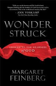 the importance of thanksgiving to god wonderstruck awaken to the nearness of god margaret feinberg