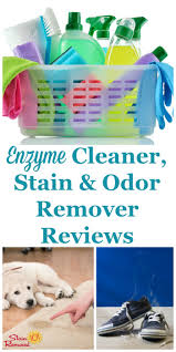 Upholstery Cleaning Products Reviews Enzyme Cleaner Stain U0026 Odor Remover Reviews Which Products Work