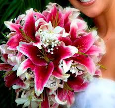 stargazer bouquet best 25 stargazer bouquet ideas on bouquet