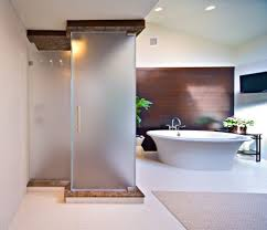 Plain Bathrooms Bathroom Design Amazing Luxury Rectangle Frosted Glass Doors