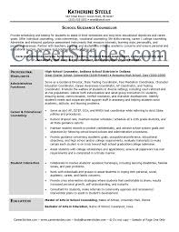 Youth Counselor Resume Sample by Guidance Counselor Resume Clinical Counselor Cover Letter