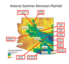 Flagstaff Arizona Map by When And Where Do You Look For Mushrooms In Arizona