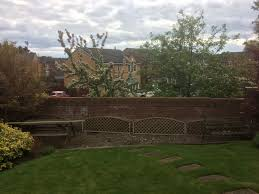 Climbing Plants For North Facing Walls - climbers to cover a brick wall gardening forum gardenersworld com