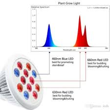 types of grow lights par spot light type plant grow l with red blue 12w