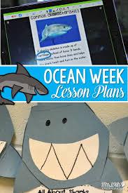 88 best a smorgasboard of ocean ideas images on pinterest ocean