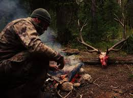 colorado semi guided elk hunts unguided hunting trip directory outdoors international