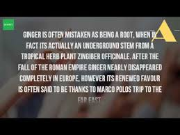 Is Ginger Root A Vegetable - is ginger a root or a stem youtube