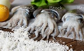 cuisiner la seiche fraiche photo de seiche fraîche avec des légumes image libre de droit