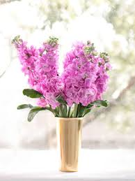 flower subscription bloombox co mini flower subscription sydney melbourne 36 90