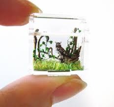 imakecutestuff com tiny cute tiny owl woodland terrarium diorama