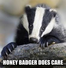 Meme Honey Badger - poor little honey badger i just might die from the cute