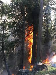 Ca Wildfire Containment by California Wildfire Roundup For Sept 19 Jefferson Public Radio