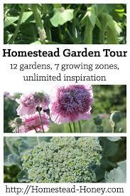 Gardening Zones Canada - june garden and homestead garden tour homestead honey