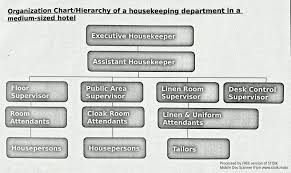 bold design ideas layout of housekeeping department 11 in hotel