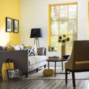 color of the month may 2016 buttercup this old house