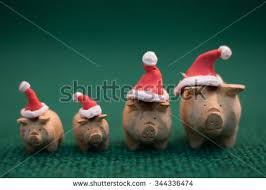 christmas pig christmas pig stock images royalty free images vectors
