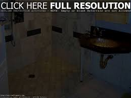 bathroom knockout handicap bathroom designs captivating