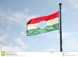 hungarian flag royalty free stock photos image 6325598
