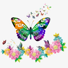 colorful butterfly butterfly flowers border png and psd file for