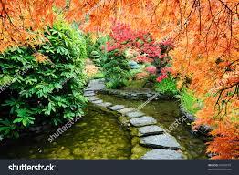 pond path japanese garden inside famous stock photo 56646679