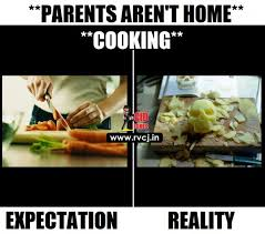 Define Memes - these 10 memes perfectly define expectation and reality when parents