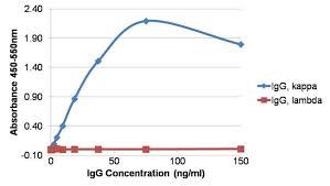 difference between kappa and lambda light chains mouse anti human kappa light chain biotin