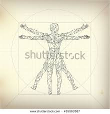 He Made Accurate Drawings Of The Human Anatomy Anatomy Stock Images Royalty Free Images U0026 Vectors Shutterstock