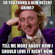 Decent Meme - so you found a new decent anime tell me more about how i should