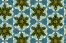 green wallpapers barbaras hd wallpapers
