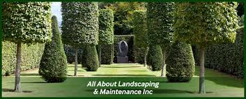 All About Landscaping by All About Landscaping U0026 Maintenance Inc Is A Landscaping Company